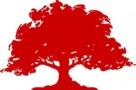Red Oak Klub Multisportowy